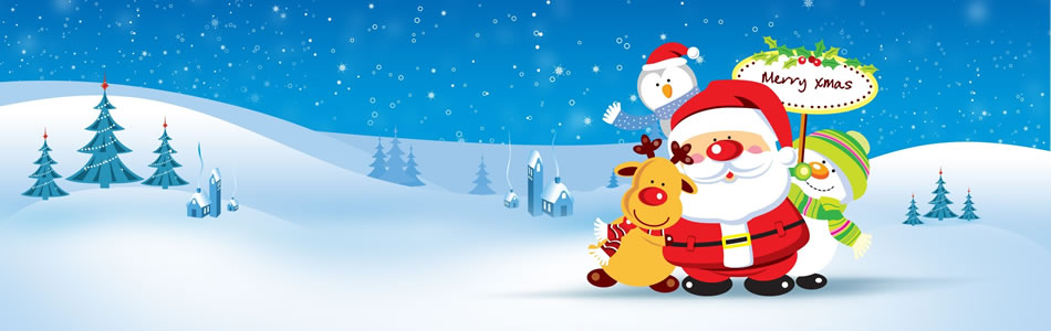 Christmas Holidays India | 2012 Christmas Package Deals India ...