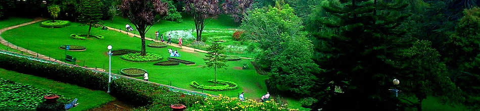 Ooty Summer Tours India,Ooty Summer Tour Operators Delhi India,Ooty Summer Vacations,Ooty Summer Holidays